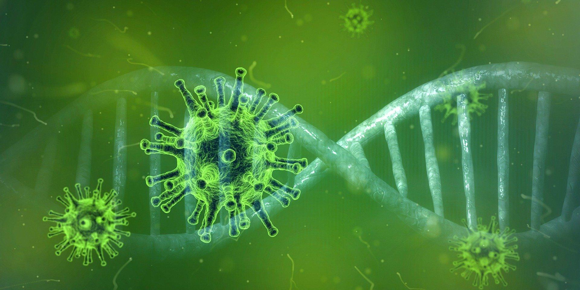Image microscopique du Coronavirus